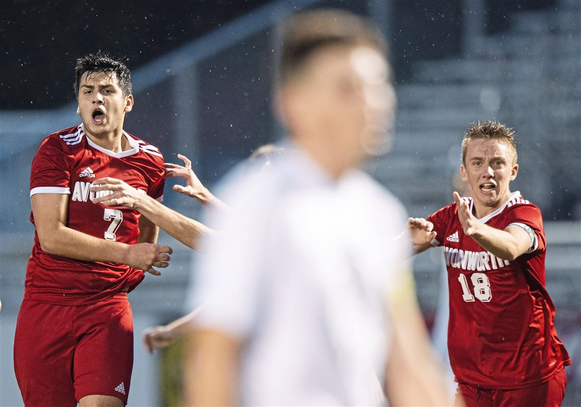 d10adb55f Avonworth s Sam Guzzo and Avonworth s Lucas Schriefer react after Guzzo s  goal during the WPIAL Class 1A