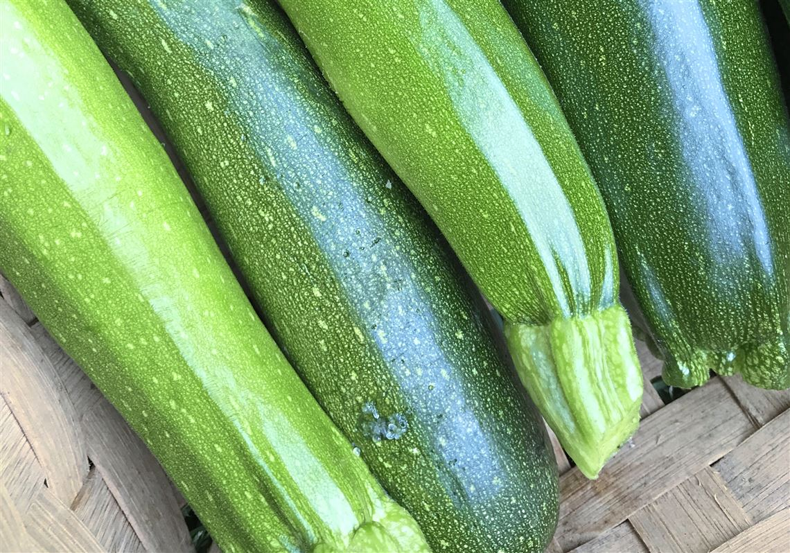 Without doubt zucchini is the vegetable of the moment | Pittsburgh on veggie pringles, veggie trees, veggie baskets, veggie animals, veggie plants, veggie garden,