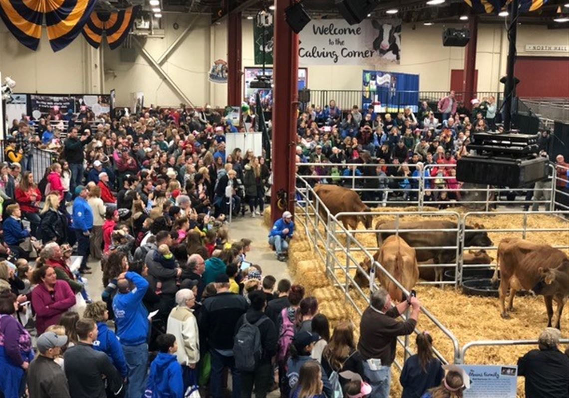 104th Pa Farm Show Features New Foods Old Favorites Pittsburgh Post Gazette