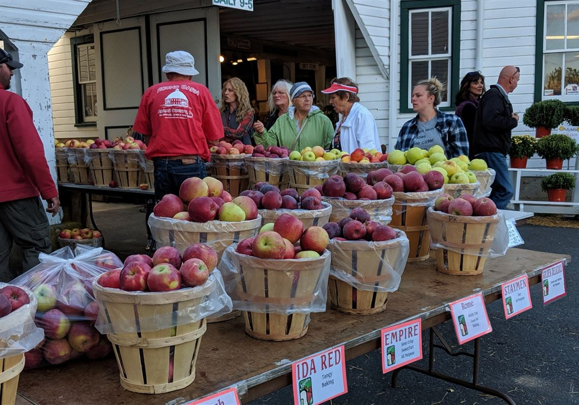 Field Notes: National Apple Harvest Festival