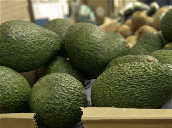 Avocados are recalled in 6 states over listeria concerns